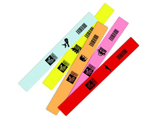 Zebra Z-Band Fun product image